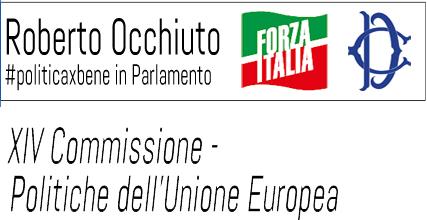 Indagine sull'attuazione e sull'efficacia delle Politiche dell'Unione Europea in Italia in XIV Commissione.