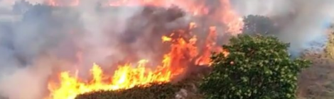 Sugli incendi regna una disorganizzazione generale